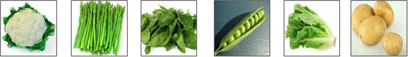 Como conservar frutas y verduras en el refrigerador